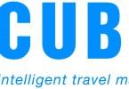 cubic_slogan_pms300-hi-res.jpg