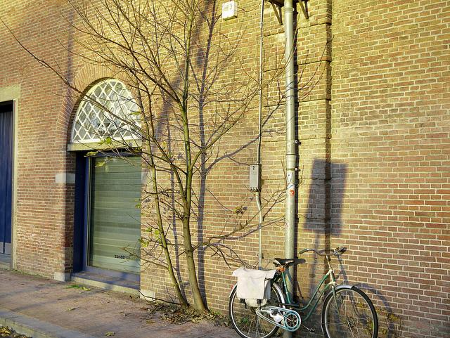Amsterdam to appoint bike mayor