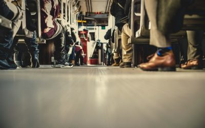 MaaS Alliance expands with IT company Open Transport