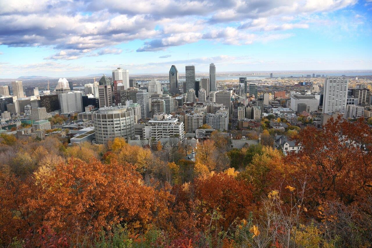 Government unveil upcoming procurement opportunities in Montreal